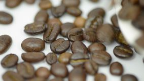 Roasted Coffee beans poured from plate stock video footage