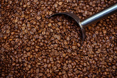 Roasted coffee. Beans are presented in dynamic light Royalty Free Stock Photography