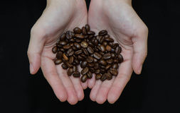 Roasted Coffee Beans, ready to serve Stock Image