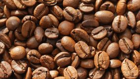 Roasted coffee beans. stock video