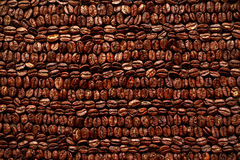 Roasted Coffee beans in rows background, texture. Royalty Free Stock Photo