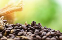Roasted coffee beans in sack Closeup macro of coffee beans on wooden and green nature sunlight background. Roasted coffee beans in sack / Closeup macro of coffee stock photo