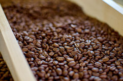 Roasted Coffee Beans. Coffee beans for sale at the market Stock Images