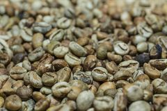 Roasted coffee beans. Shallow depth of field photo of roasted coffee beans at Ubud, Bali Stock Image
