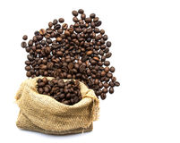 Roasted coffee beans spilled on pile and in burlap sacks Royalty Free Stock Photos