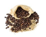 Roasted coffee beans spilled on pile and in burlap sacks Royalty Free Stock Photo