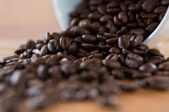 Roasted coffee beans spilling out of cup Royalty Free Stock Image