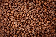 Roasted coffee beans texture. Close up view, top view royalty free stock photo