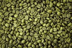 Green coffee beans texture. Close up view, top view stock image