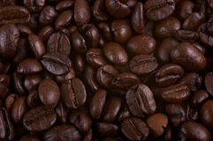 Roasted coffee beans. To roasting Royalty Free Stock Images