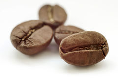 Roasted coffee beans  on white background. with shadow Stock Photo