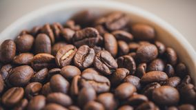 Roasted Coffee Beans In White Bowl stock image