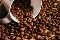 Roasted coffee beans and white mug Royalty Free Stock Image