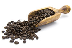 Roasted coffee beans in wooden scoop Stock Photos