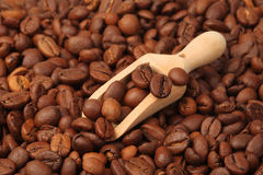 Roasted coffee beans with wooden spoon Royalty Free Stock Photo