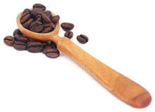 Roasted coffee beans in wooden spoon Royalty Free Stock Photography