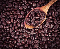 Roasted coffee beans in wooden spoon placed on coffee beans as background. The roasted coffee beans in wooden spoon placed on coffee beans as background Stock Image