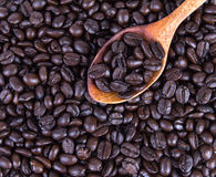 Roasted coffee beans in wooden spoon placed on coffee beans as background. The roasted coffee beans in wooden spoon placed on coffee beans as background Royalty Free Stock Image