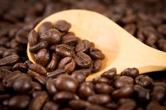 Roasted coffee beans in wooden spoon placed on coffee beans as background Stock Photos