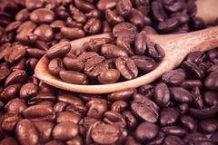 Roasted coffee beans in wooden spoon placed on coffee beans as background Royalty Free Stock Photography