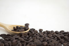 Roasted coffee beans and a wooden spoon on white background. Roasted coffee beans and a wooden spoon isolate on white background Royalty Free Stock Photography