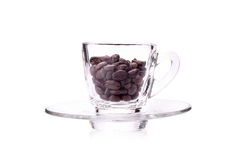 Roasted coffee beansIn coffee cup Stock Images