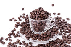 Roasted coffee beansIn coffee cup Royalty Free Stock Image