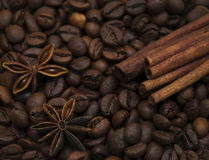 Roasted coffee and cinnamon sticks Stock Images