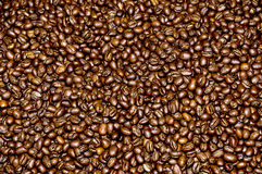 Roasted coffee from Costa Rica Stock Photo