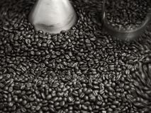 Roasted coffee crop in machine Royalty Free Stock Image