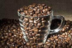 Roasted coffee in glass cup Royalty Free Stock Photos
