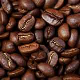Roasted coffee grain Stock Photography