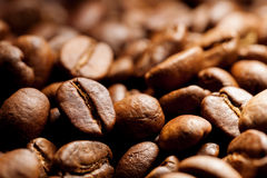 Roasted coffee grain Stock Photos