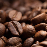 Roasted coffee grain Stock Images