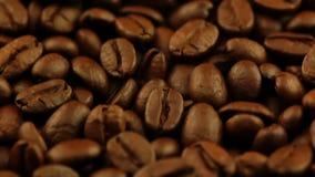 Roasted Coffee Grain Closeup stock video