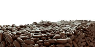 Roasted Coffee grains close-up on white. Artistic shallow DOF Royalty Free Stock Photography