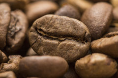 Roasted Coffee Stock Photography