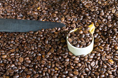 Roasted Coffee. Nice aroma of roasted coffee beans Stock Photos