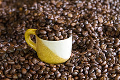 Roasted Coffee. Nice aroma of roasted coffee beans Royalty Free Stock Image