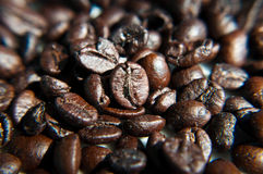 Roasted  coffee seeds. Coffee beans in blur background Stock Image