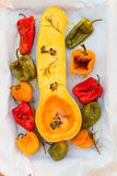 Roasted colorful bell peppers and butternut squash with herbs. Stock Photo