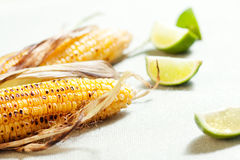 Roasted corn Royalty Free Stock Photography