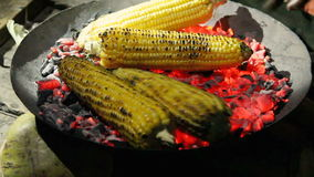 Roasted corn on the coals in the dark stock footage