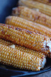 Roasted corn on cob Stock Photo