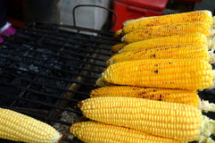 Roasted corn Stock Photography