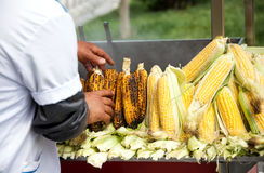 Roasted Corn in Istanbul Stock Photography