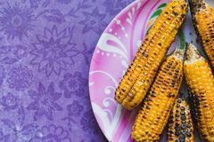 Roasted Corn on the Plate royalty free stock image