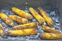 Roasted corn Royalty Free Stock Image