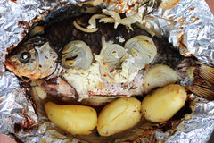 Roasted Crusian Carp Royalty Free Stock Image