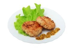 Roasted cutlets of pork Stock Images
